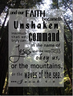our-faith-becometh-unshaken_thumb.jpg